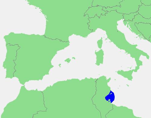 Golfo De Sirte Mapa.Gabeso įlanka Vikipedija