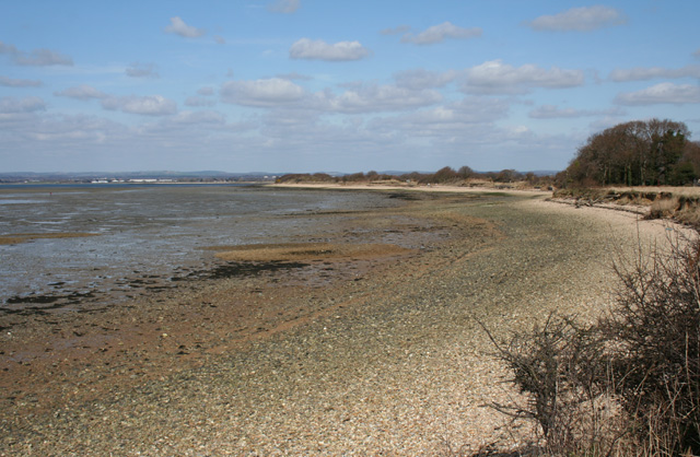 Low tide on Langstone foreshore - geograph.org.uk - 1227469