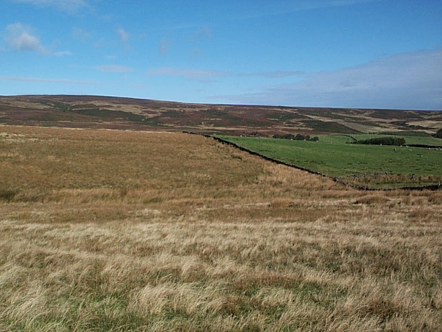 Middleton Moor - geograph.org.uk - 60846
