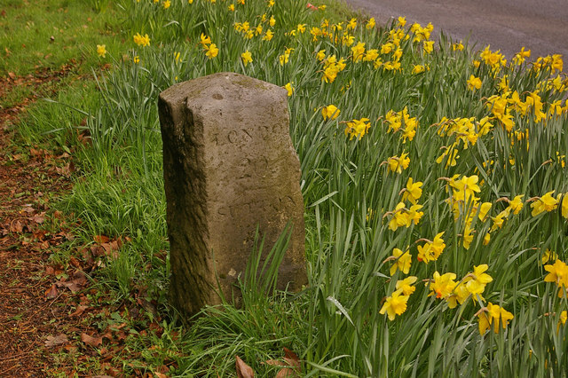 Milestone on Reigate Hill - geograph.org.uk - 726242