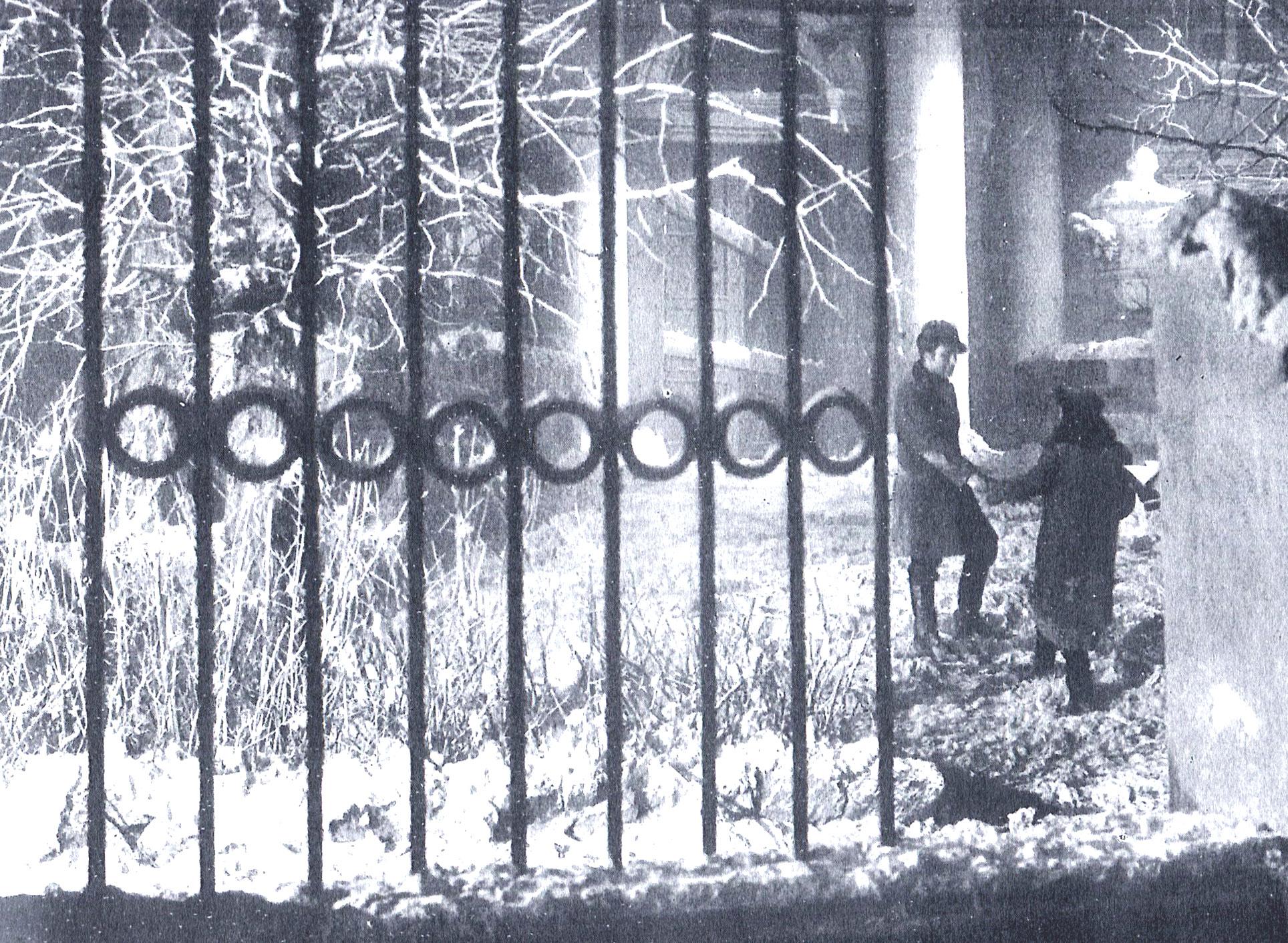 File:noivivi foto sc giardino.jpg   wikipedia