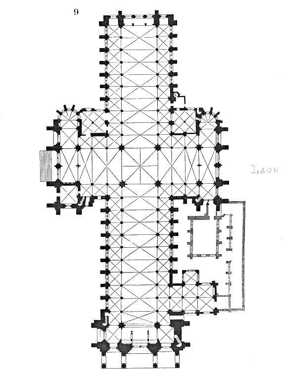 File wikimedia commons - Planta de salon ...