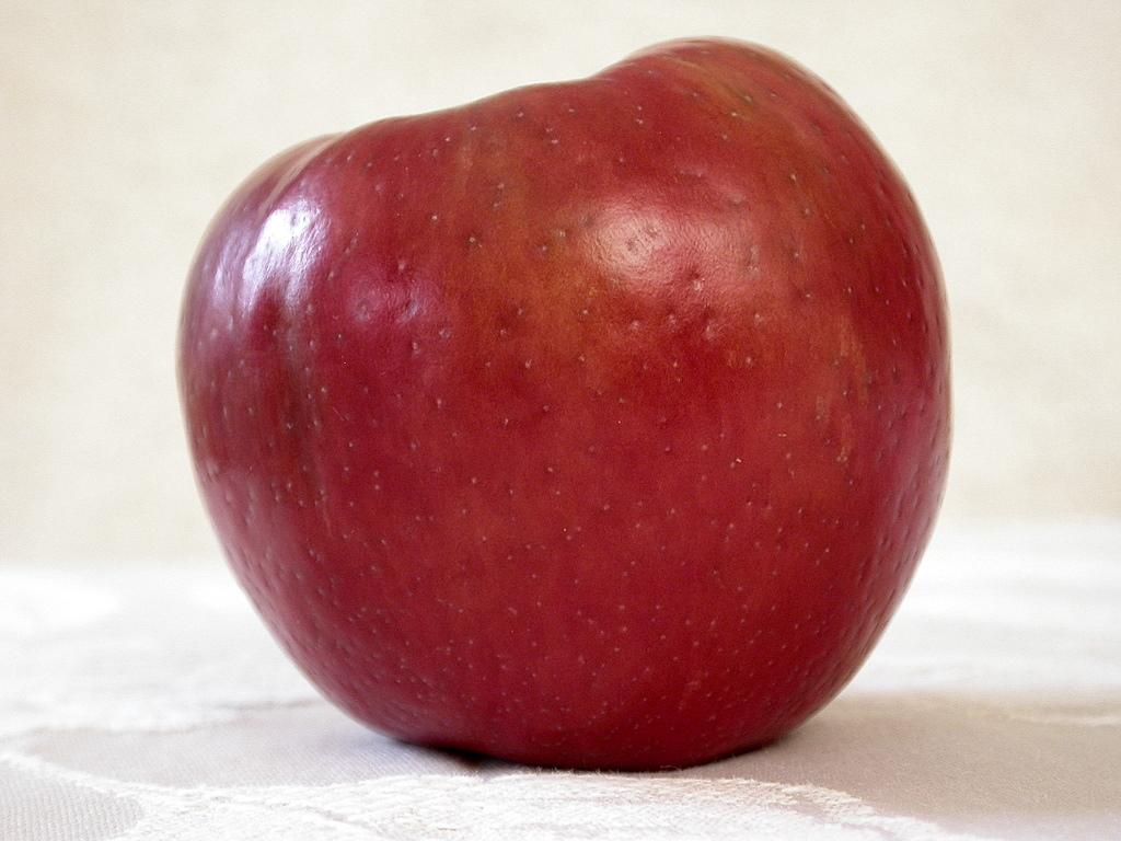 pomme, pommes,pommery, pommes anna, pommes frites, pomme chan, pommel horse, pommeranian, pomme de terre, pomme arlie