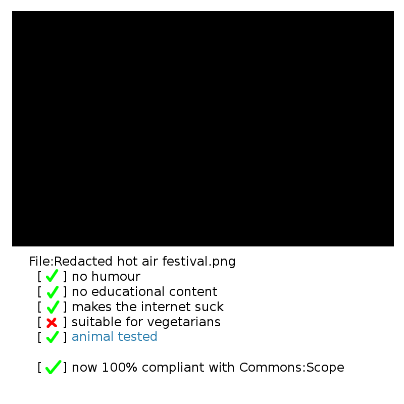 Redacted hot air festival.png