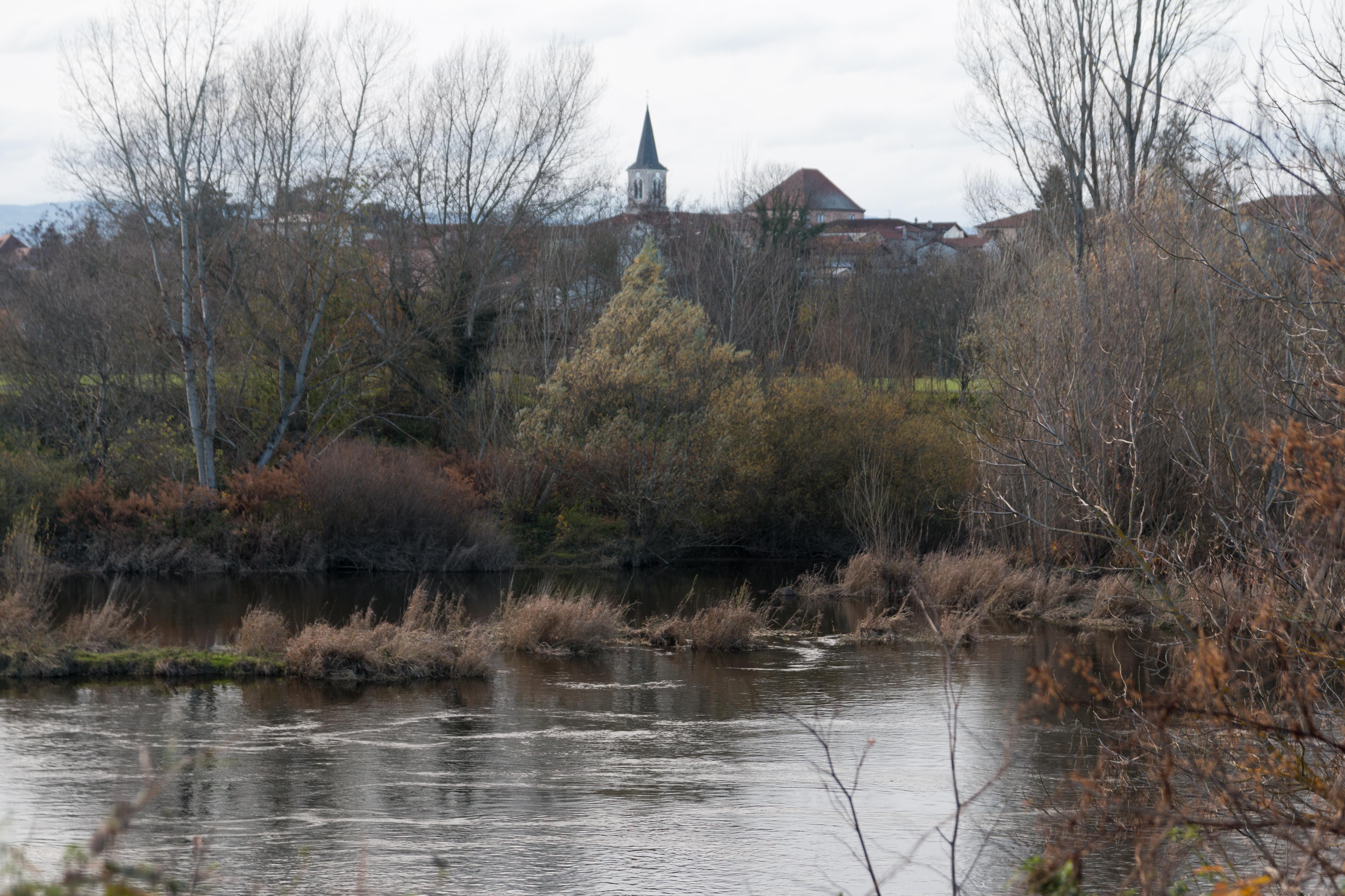 Saint-Cyprien (Loire)