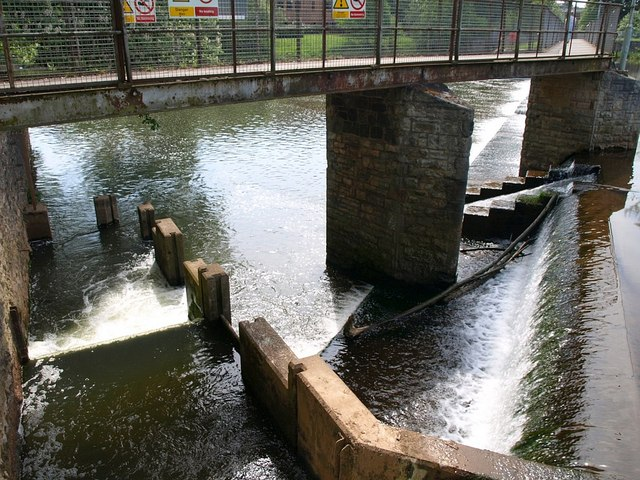 File:Salmon leaps, French Weir - geograph.org.uk - 802195.jpg