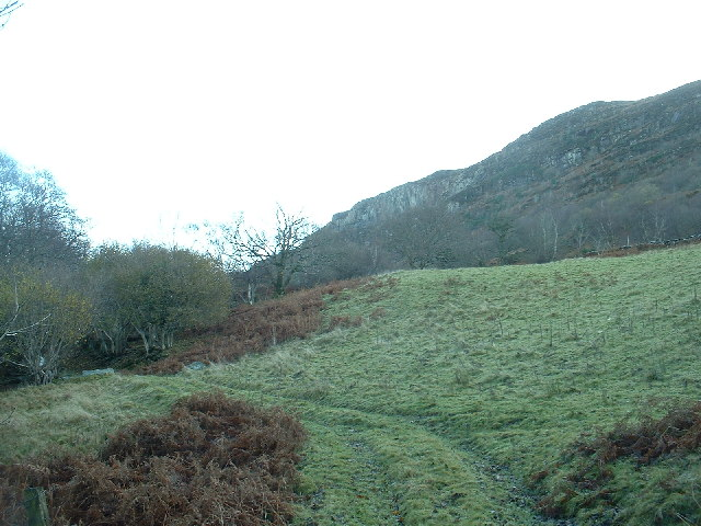 Slopes of Moel y Gest - geograph.org.uk - 90488