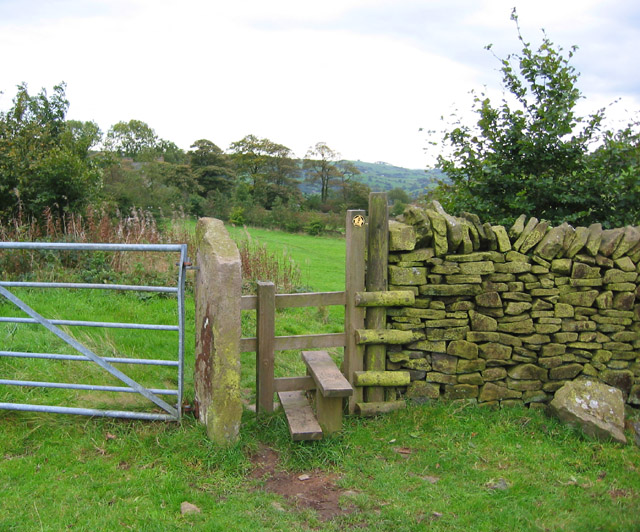 Stile on the Gritstone Trail - geograph.org.uk - 258314