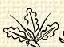 Tölgylevél (heraldika).PNG