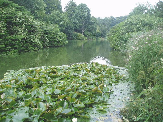 The Garden Lake at Stourhead - geograph.org.uk - 32673