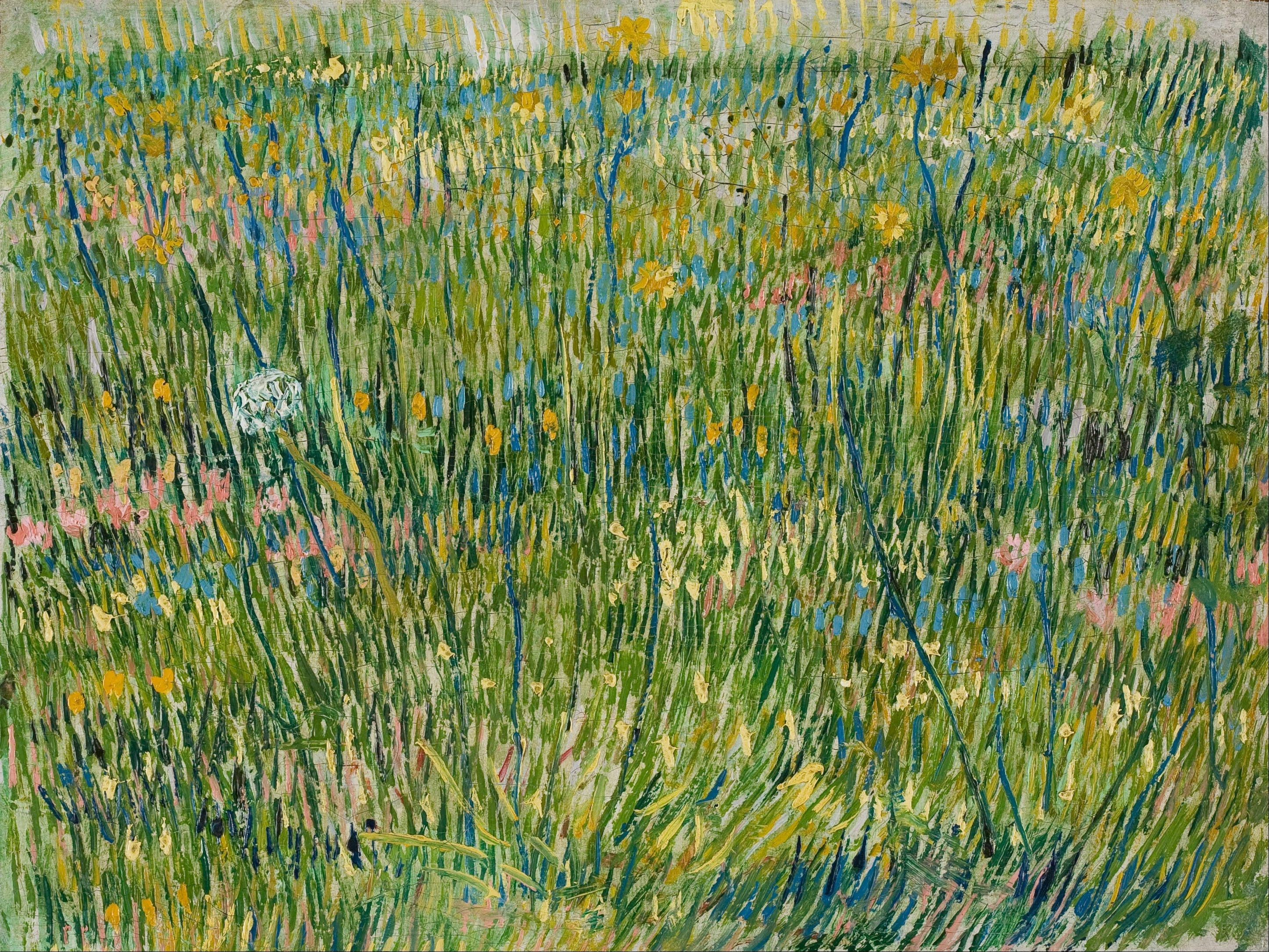 File Vincent Van Gogh Patch Of Grass Google Art