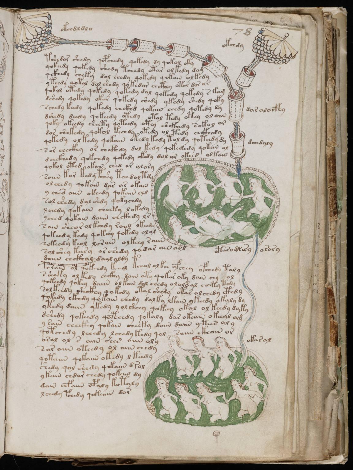 Voynich Manuscript %28141%29 ヴォイニッチ手稿(写本) どの言語にも属さない謎の文字!