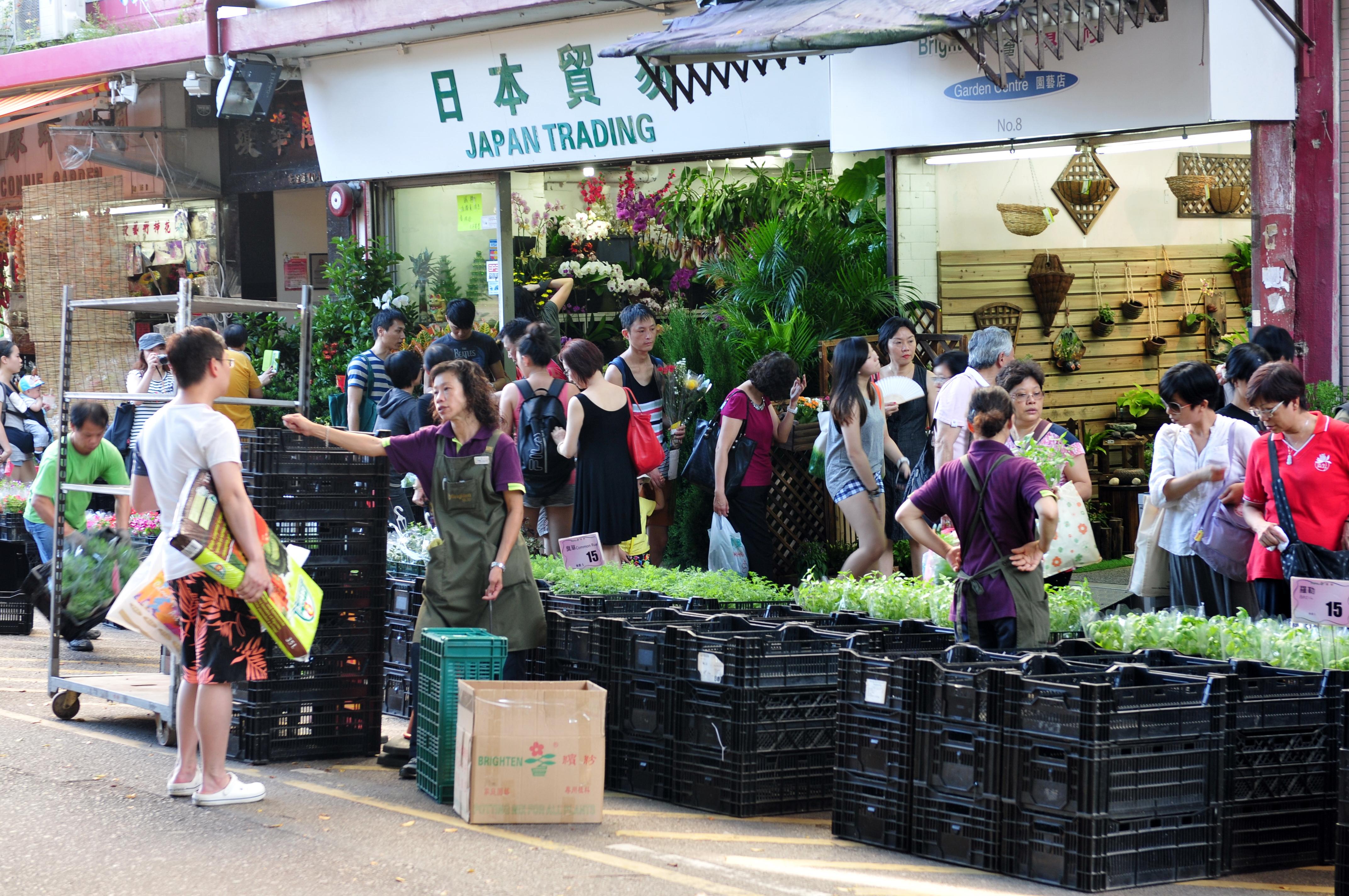 13-08-11-hongkong-50mm-22.jpg