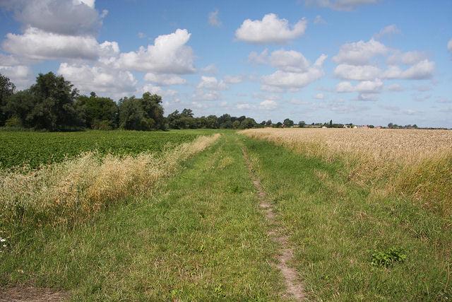 File Bridleway To West Row Geograph Org Uk 923581 Jpg