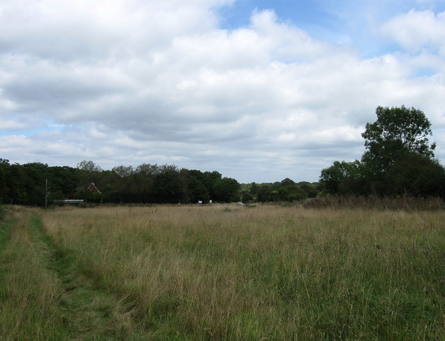 Ditchling Common - geograph.org.uk - 1446278
