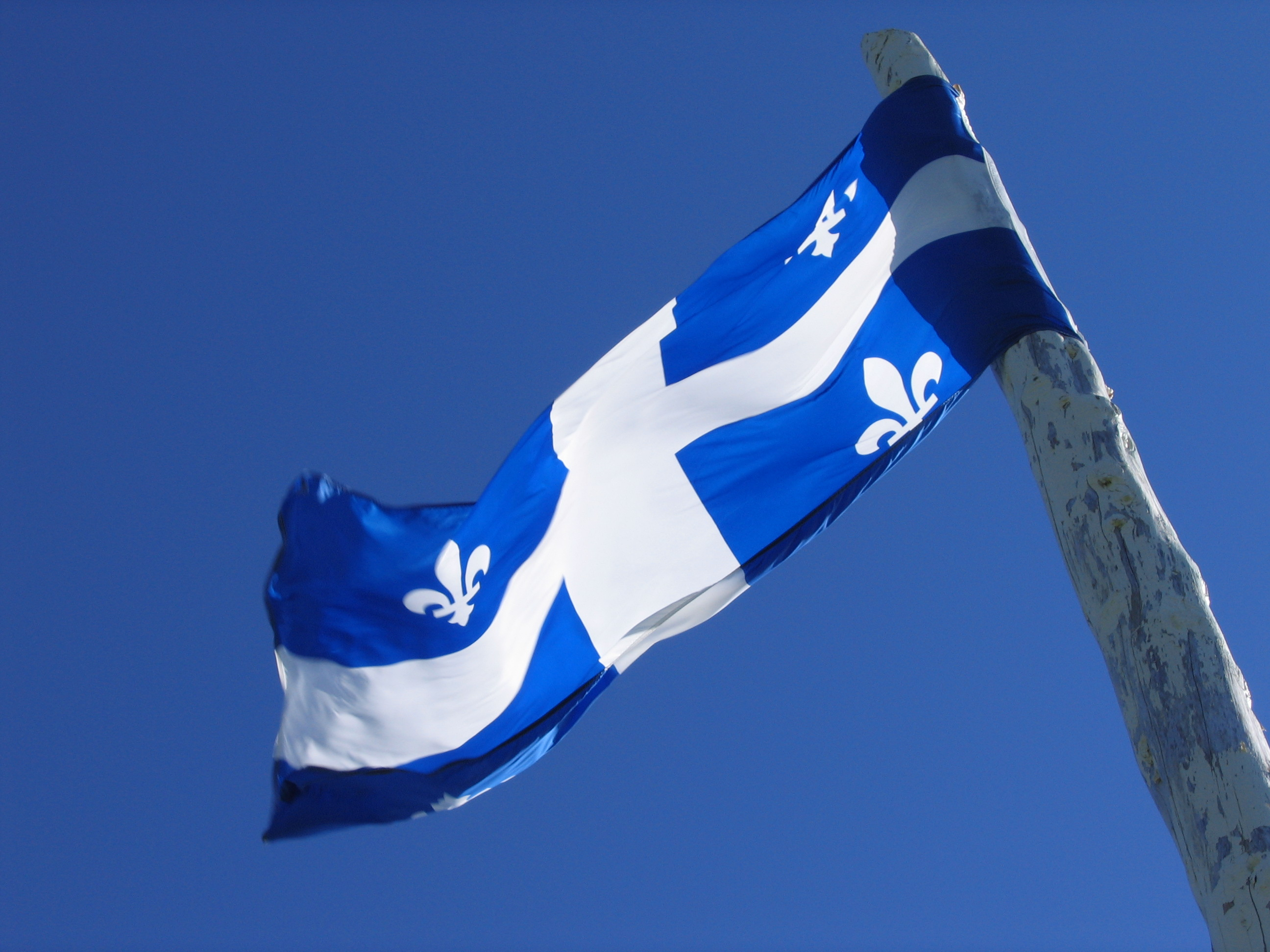 Drapeau du Québec au vent (Quebec flag flying in the wind).jpg