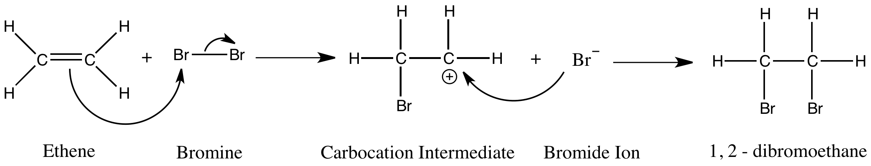 ethene and bromine