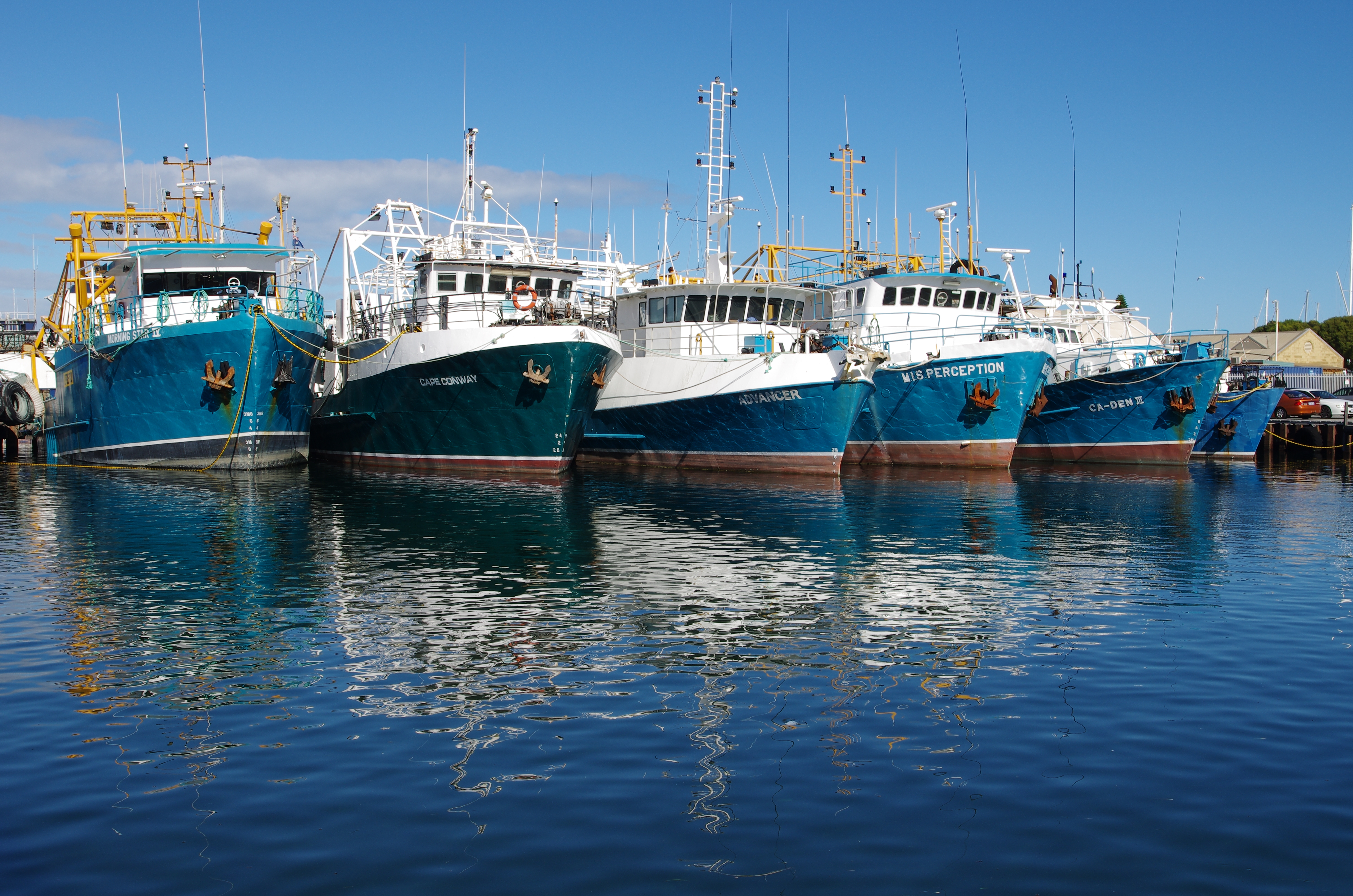 Boat Harbour Australia  City pictures : boat harbour, Tasmania, Australia What happens in boat harbour right ...