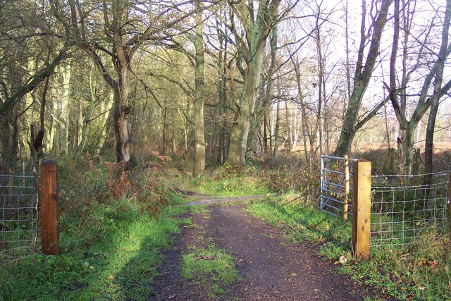 Gate on Greensand Way in Hothfield Common - geograph.org.uk - 1601799