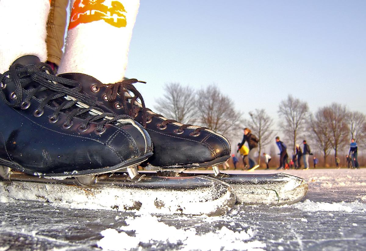 Image result for noren schaatsen