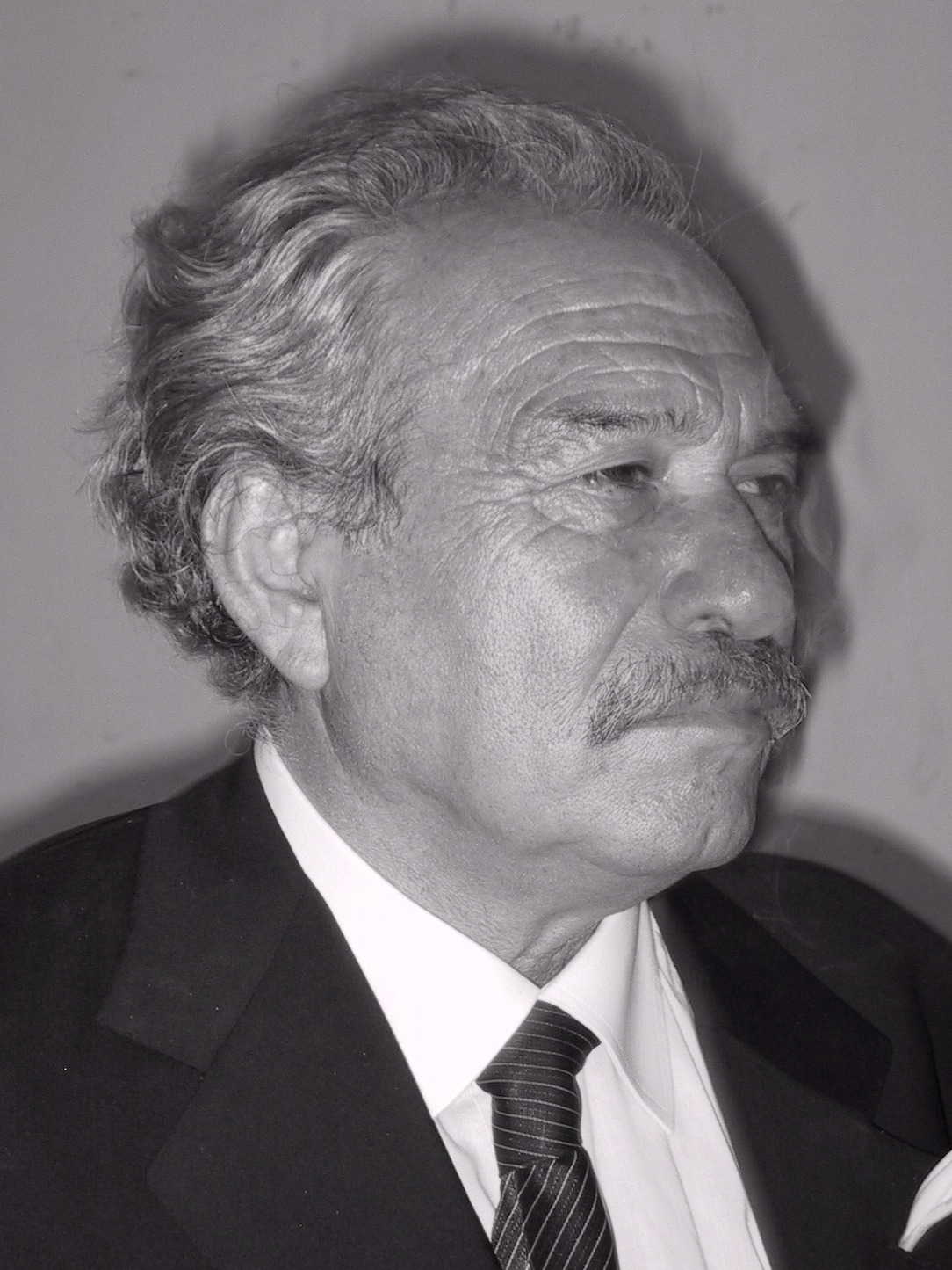 Image of Jannis Kounellis from Wikidata