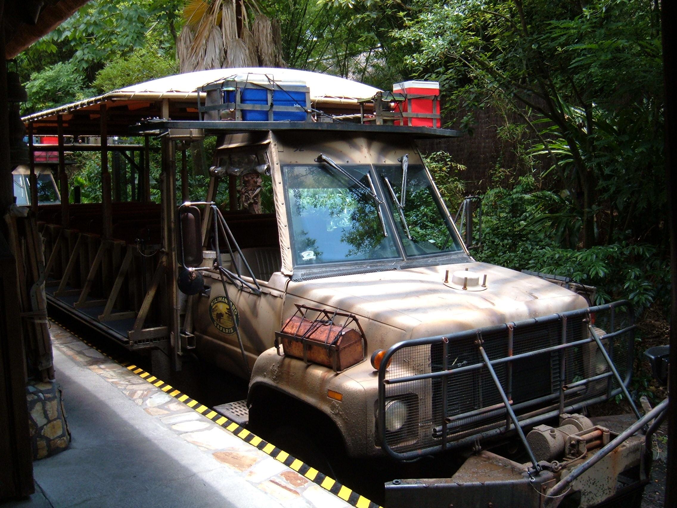 Safari Tour Orlando Florida