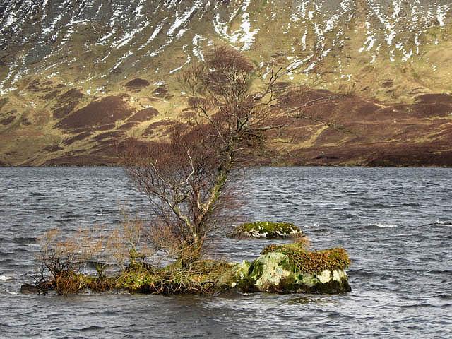 Loch Skeen - geograph.org.uk - 725946
