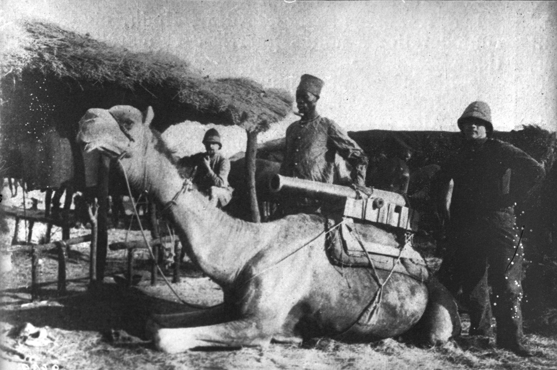 File:Mauritanie-Transport de canon.jpg