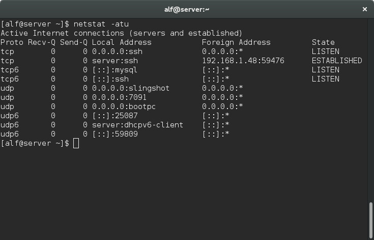 Netstat command for Established connections