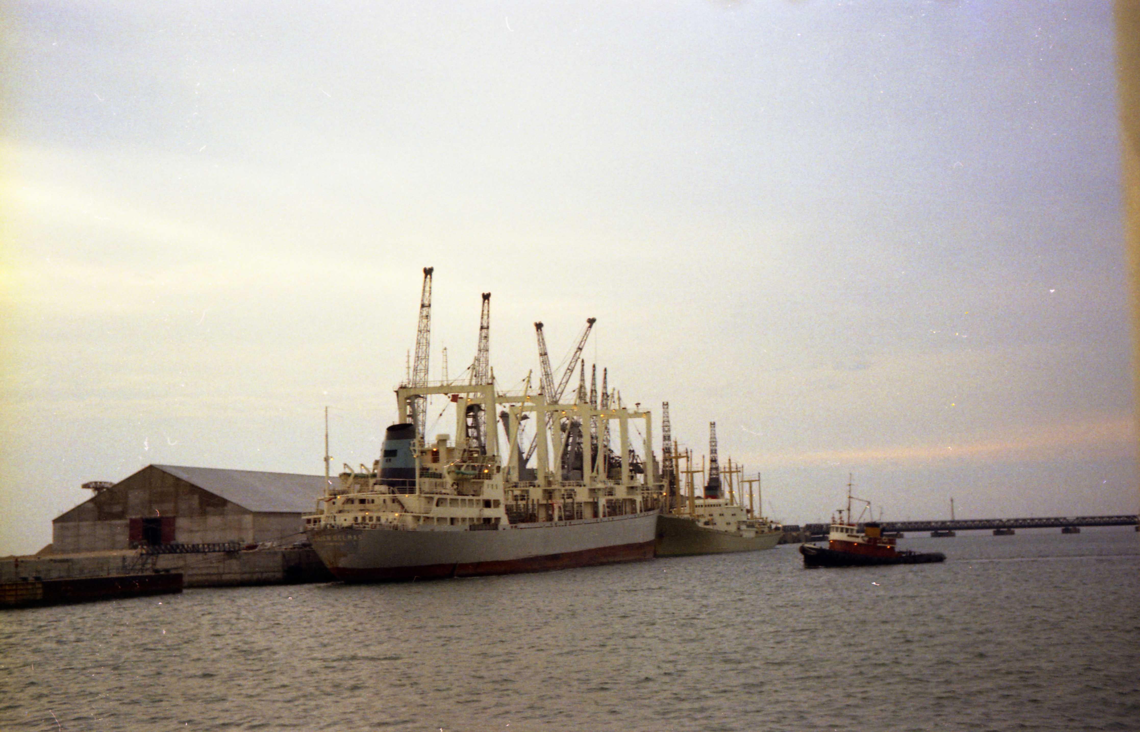 file port de commerce de la rochelle pallice deux navires cargos au m 244 le d escale jpg