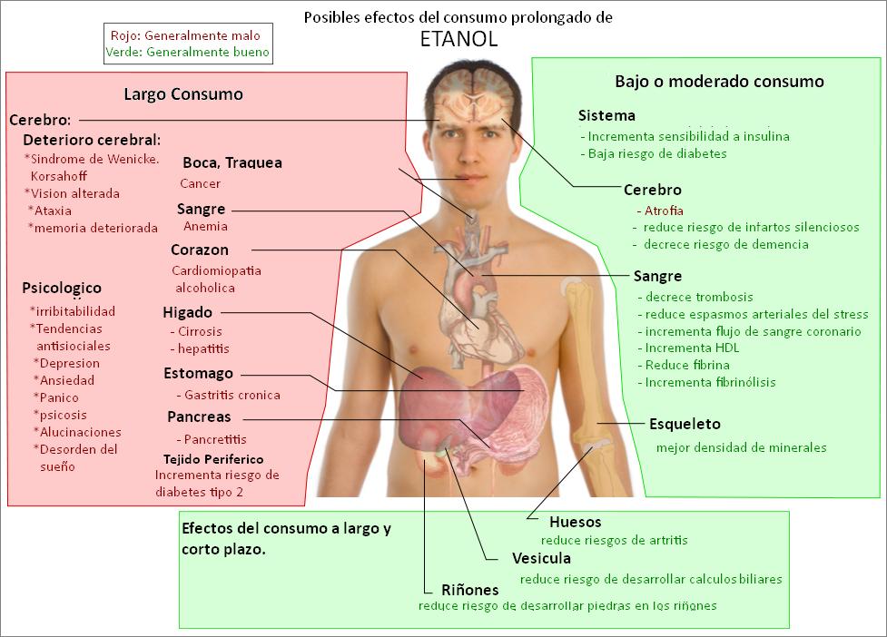 El etanol puede afectar al sistema nervioso central, provocando estados de euforia, desinhibición, mareos, somnolencia, confusión, ilusiones (como ver doble o que todo se mueve de forma espontánea).