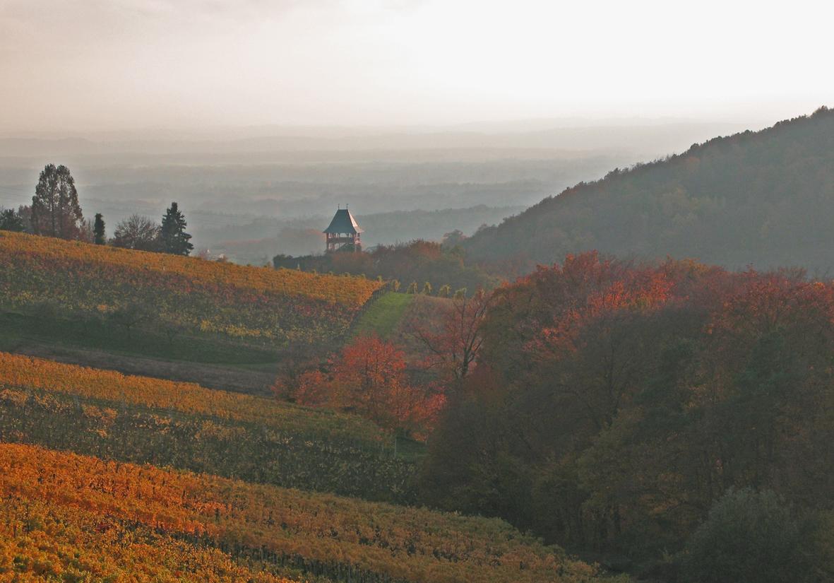 Stellenangebote in Ehrenhausen an der Weinstrae