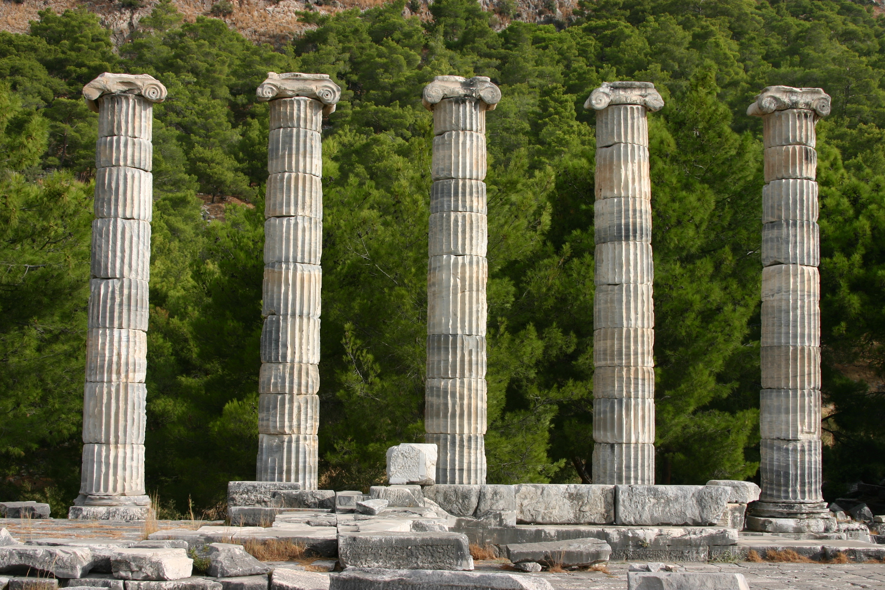 Temple of Athens at Priene (3).JPG