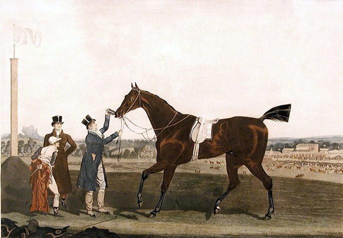 All Season Tires >> Tiresias (horse) - Wikipedia