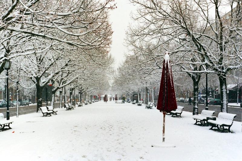 Unter den Linden im Winter.jpg