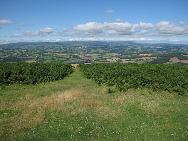 View from Garway Hill - geograph.org.uk - 1462271