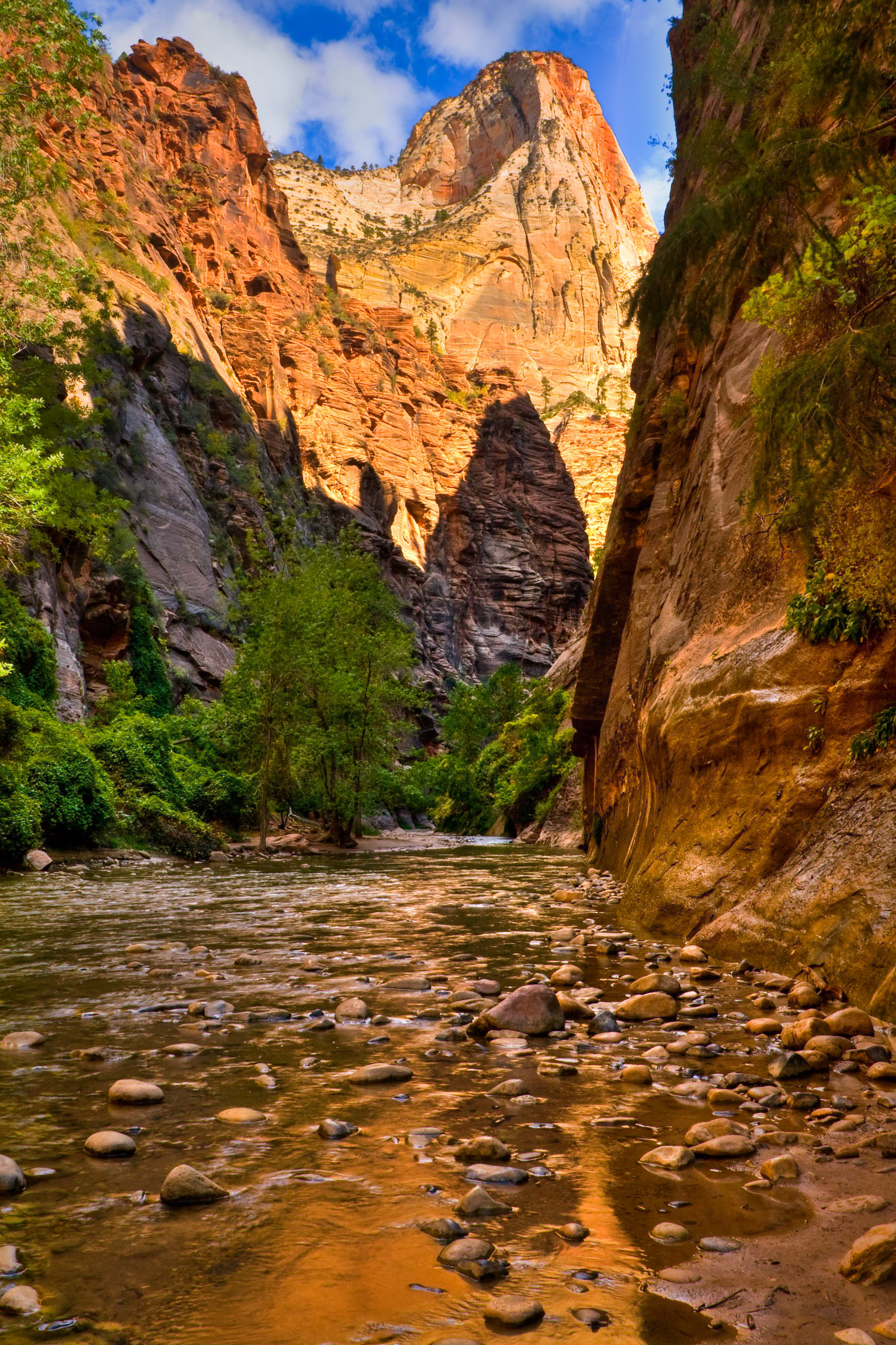 Majestic Zion National Park: Angels Landing, The Subway, Cliffs ...