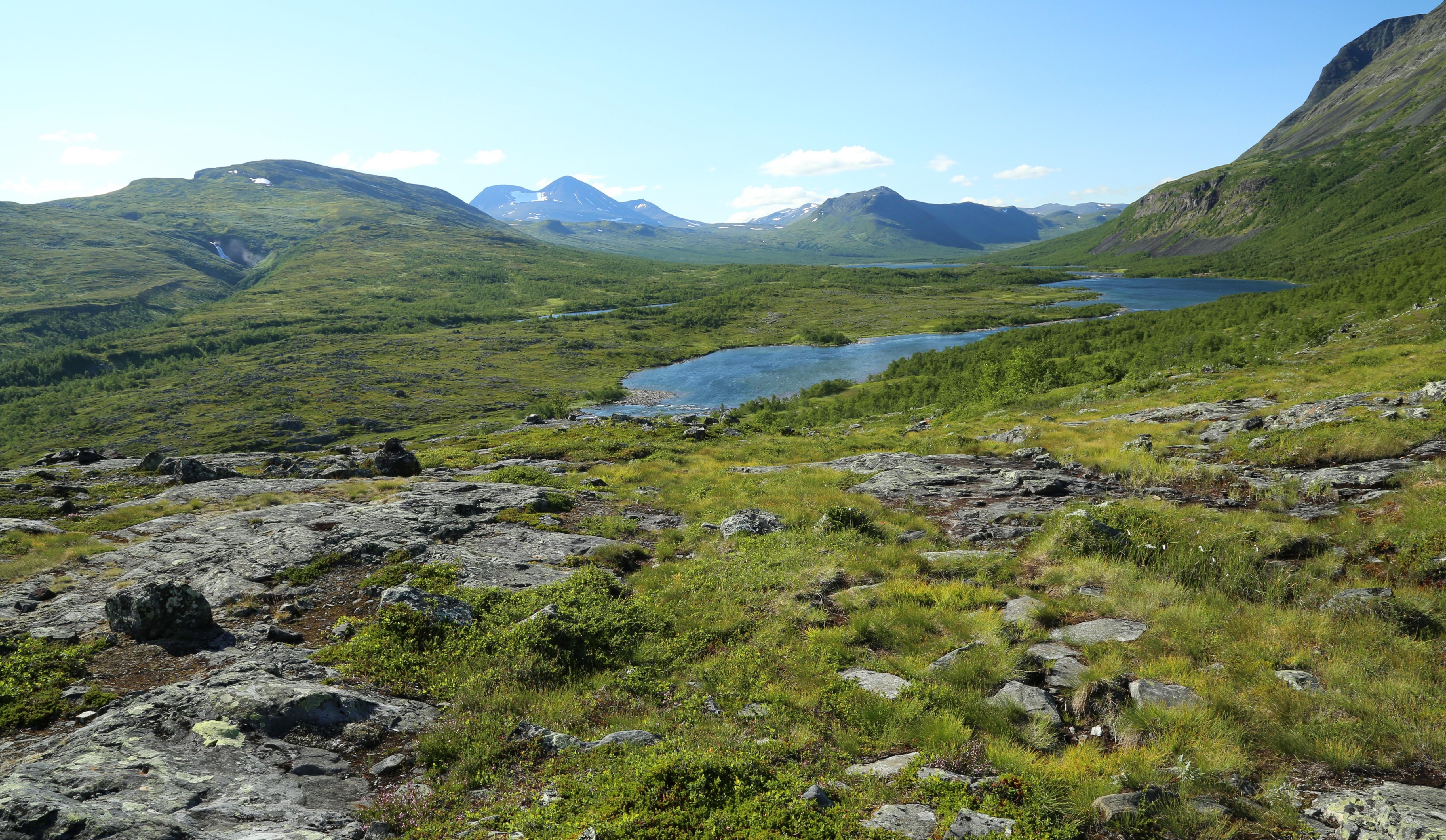Fjell wikiwand for Define scandinavian