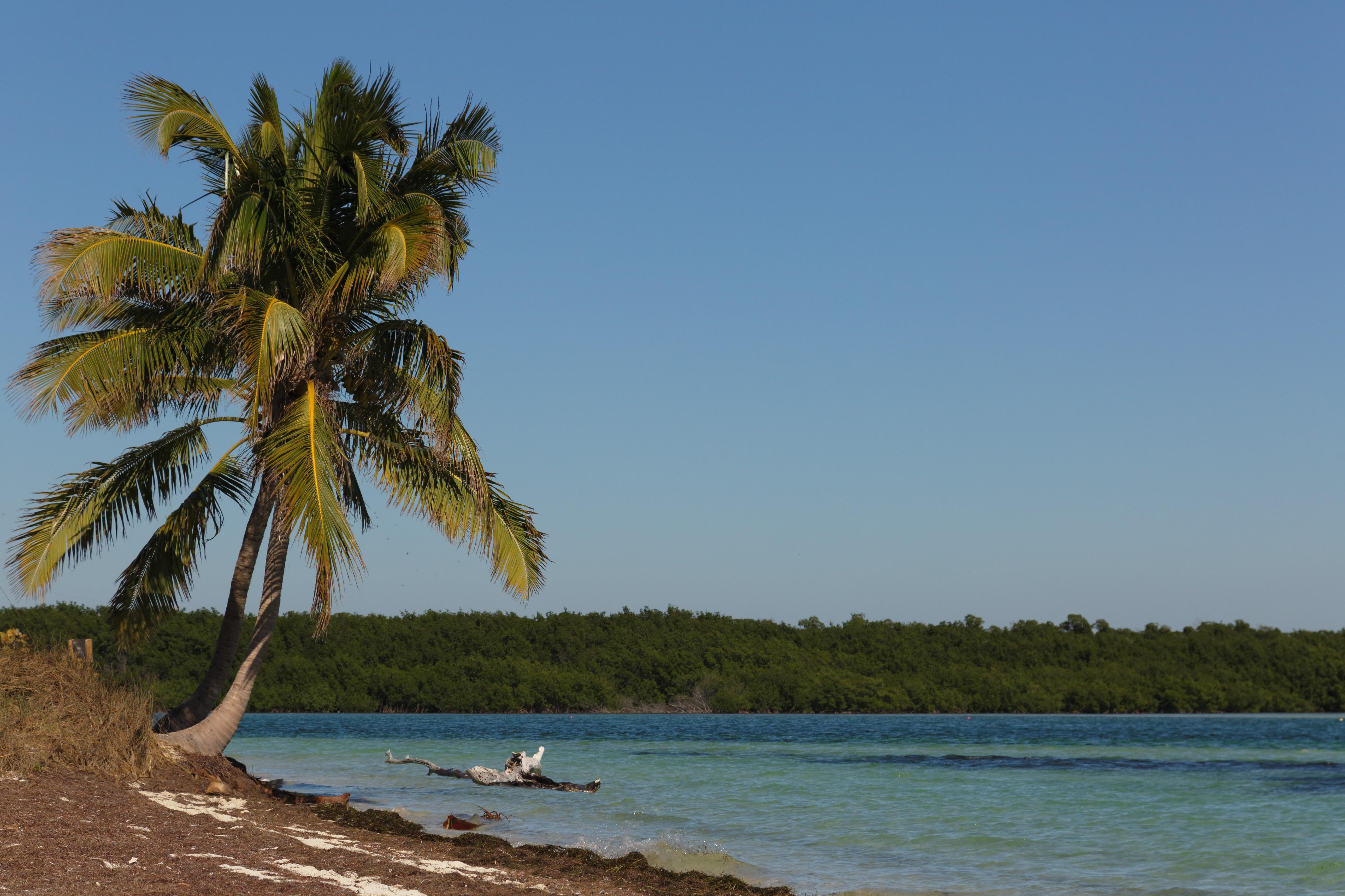 Bahia Honda State Park (9189349800).jpg