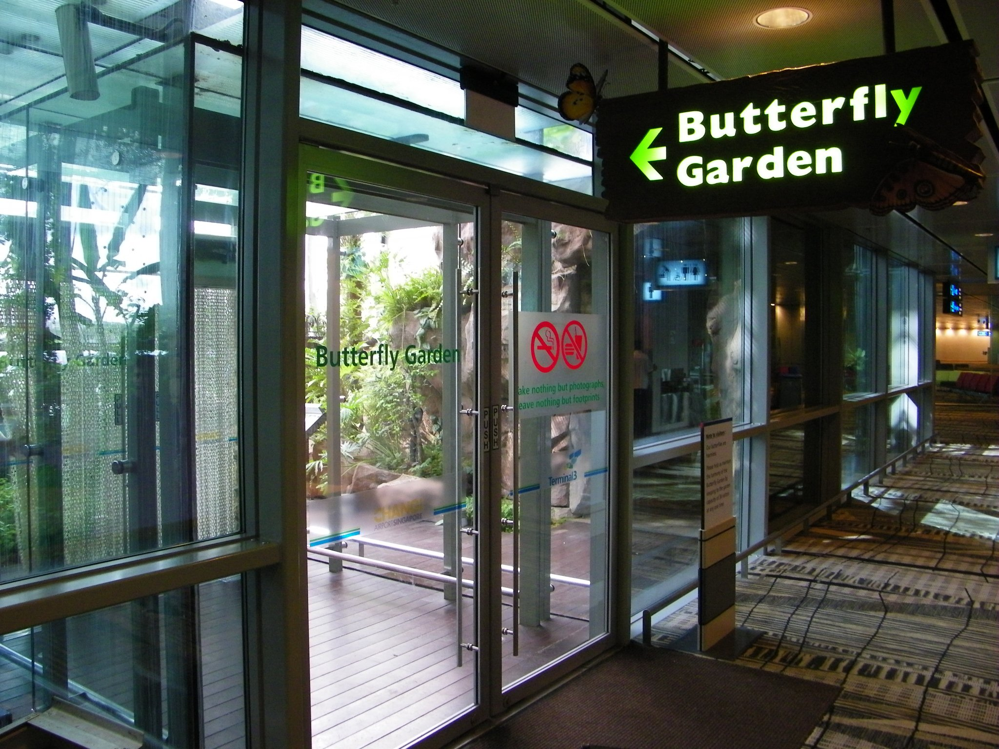 File Butterfly Garden Changi Airport Singapore