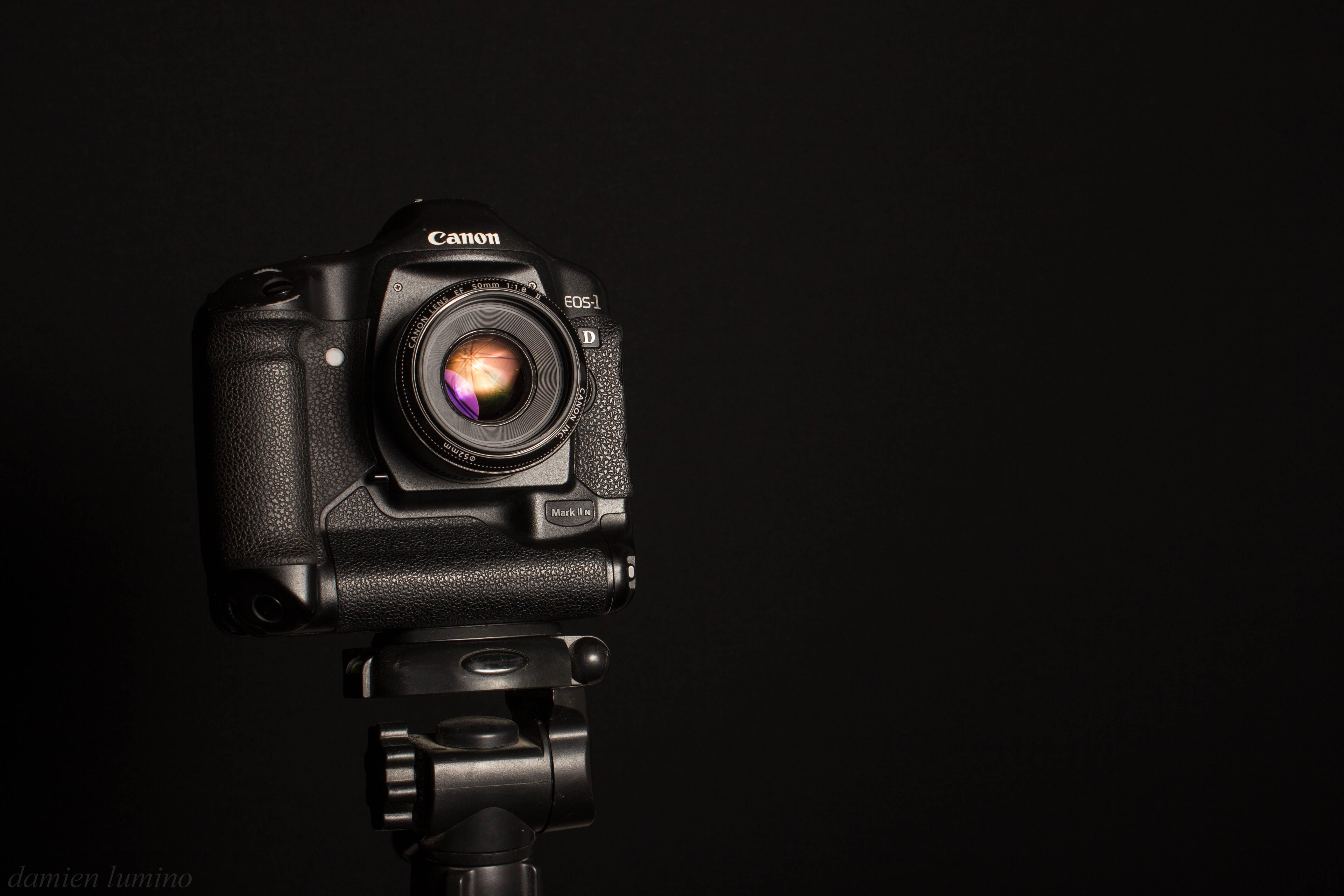 File:Canon eos 1D mark II N.+ canon 50mm 1.8.jpg