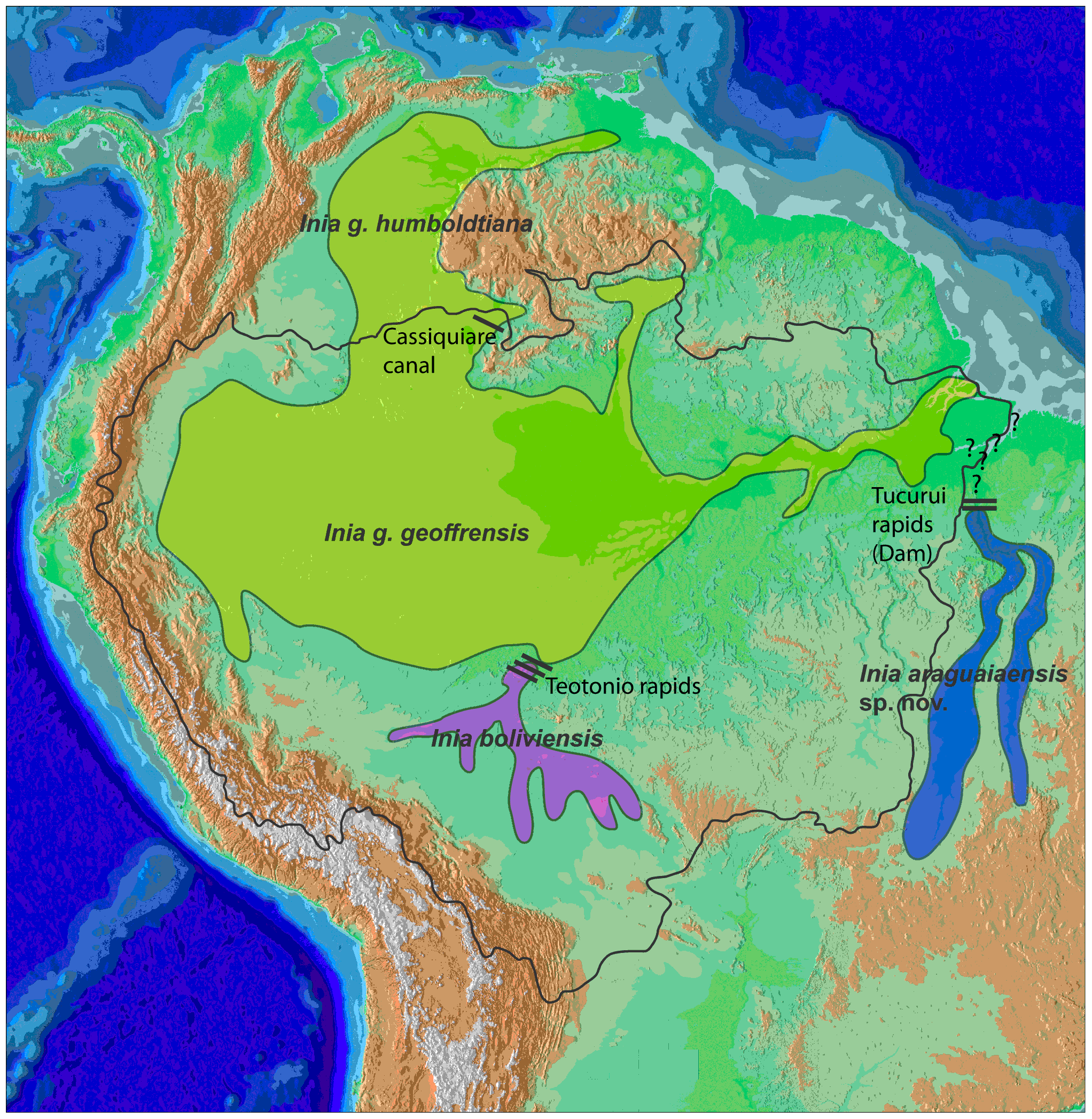 FileCetacea Range Map Amazon River DolphinPNG Wikimedia Commons - Where is the amazon river
