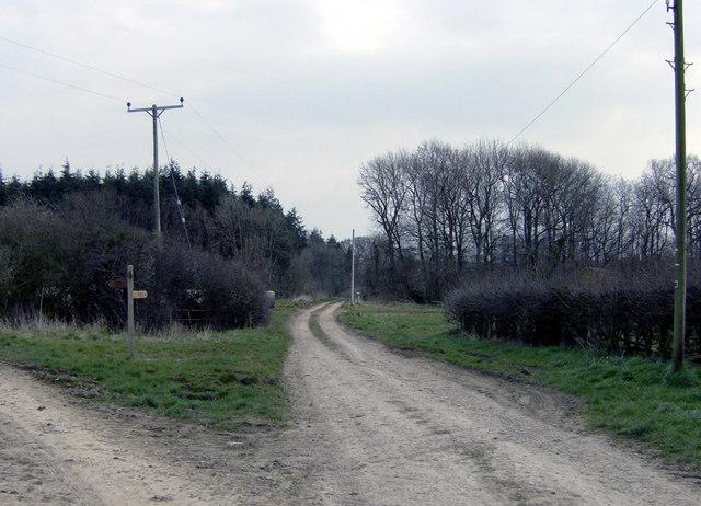 Ebor Way junction near Sproxton - geograph.org.uk - 387785