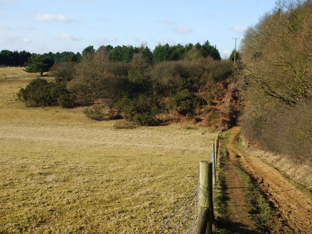 Fence line - geograph.org.uk - 1752666