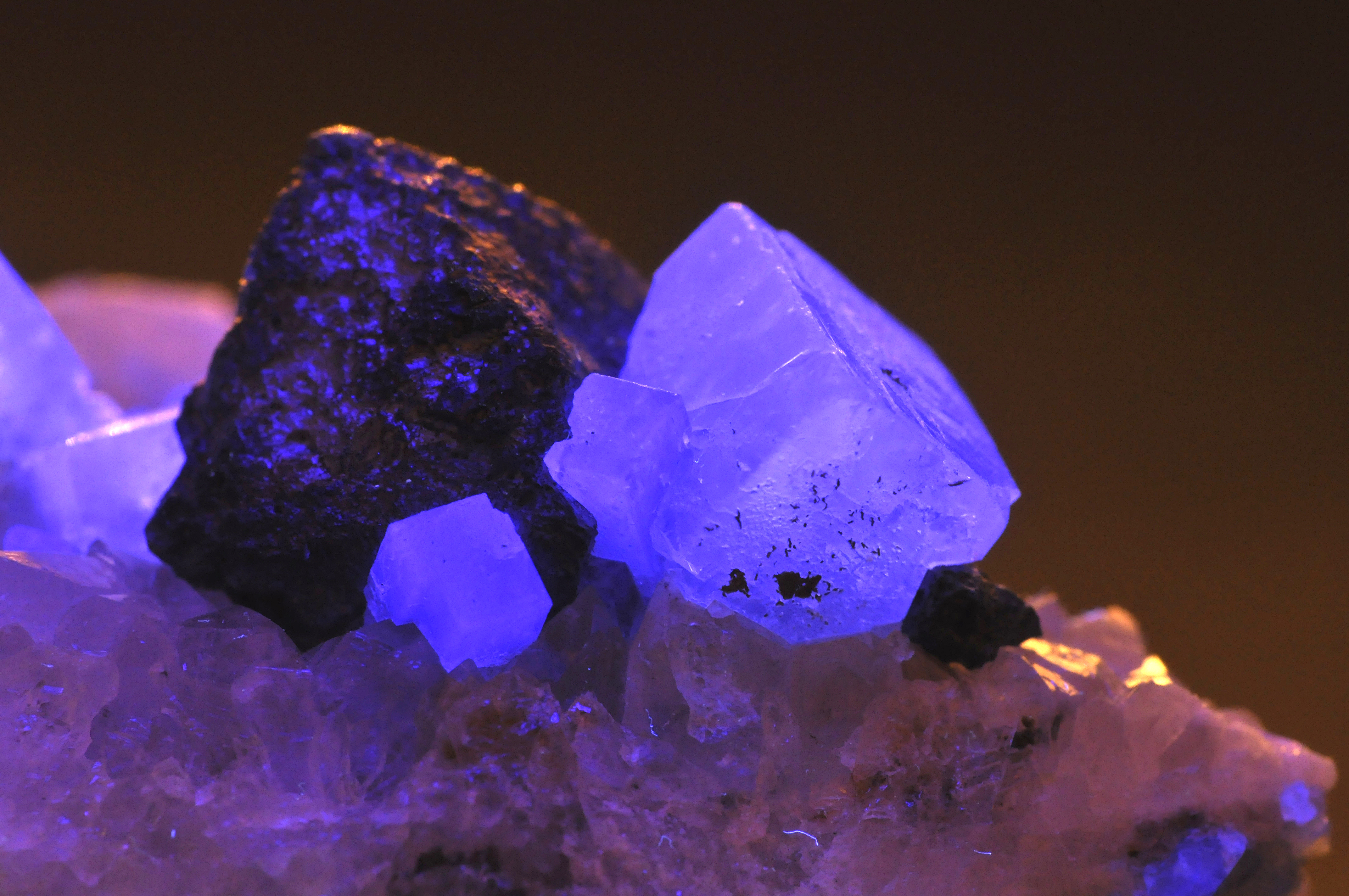 Fluorine absorption dating