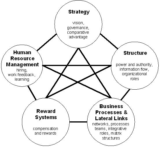 Organizational Architecture Wikiwand