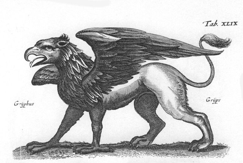 An engraving of a griffin from 1660 by Matthius Merian