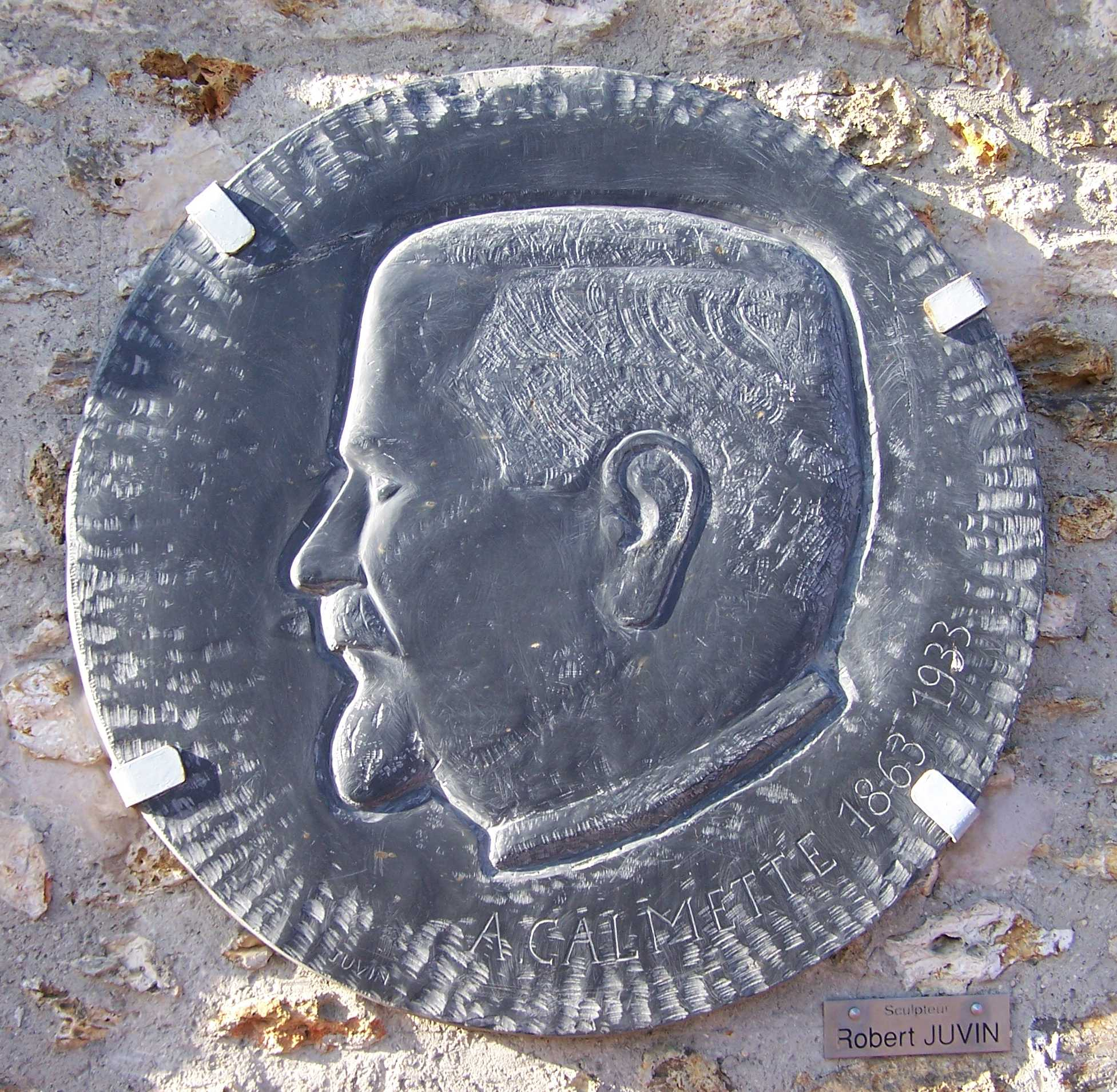 Depiction of Albert Calmette