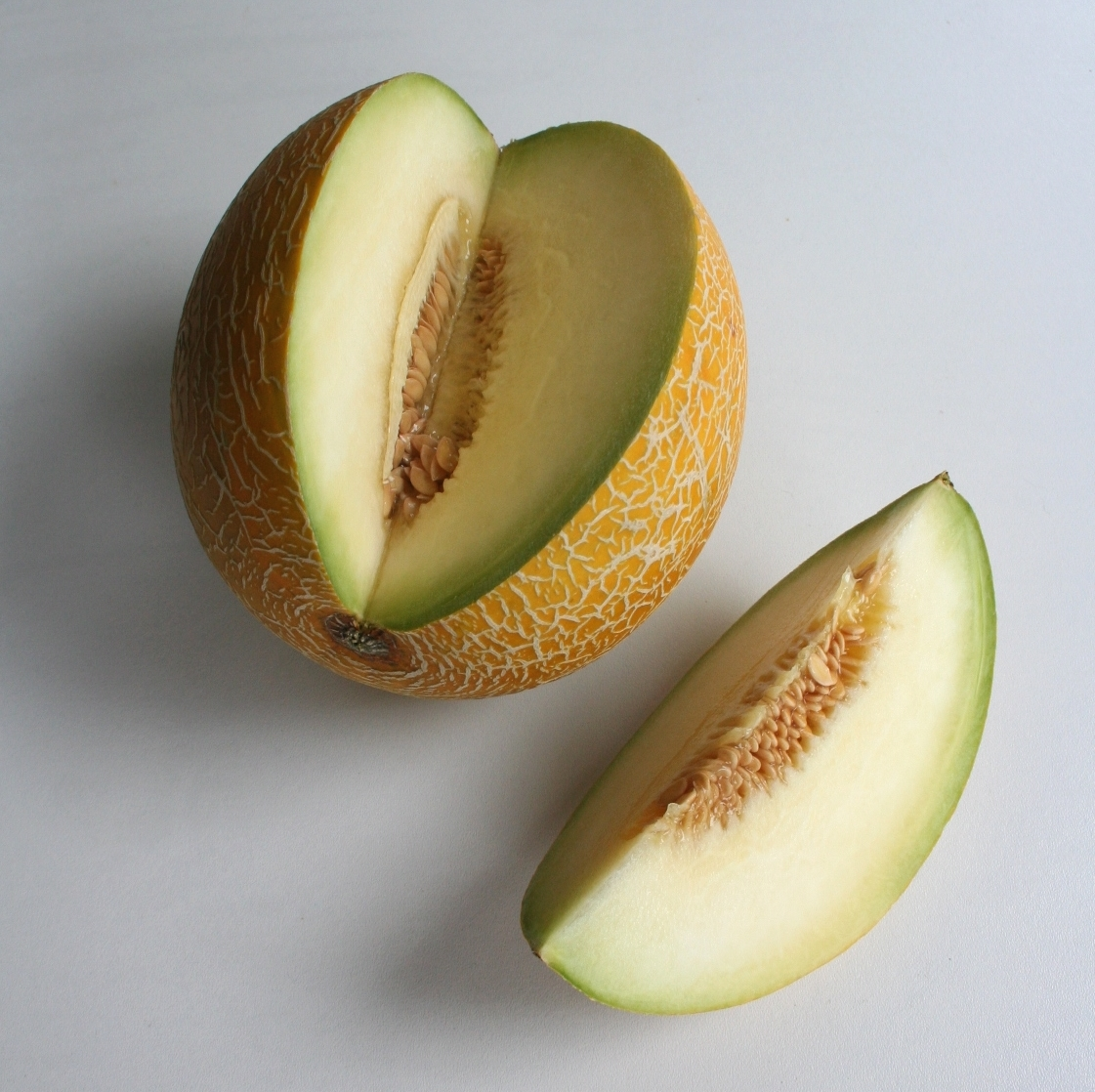 Galia Melon Wikipedia He was seen being annoying by orange until he decided to take off with his fiancée, balloon. galia melon wikipedia