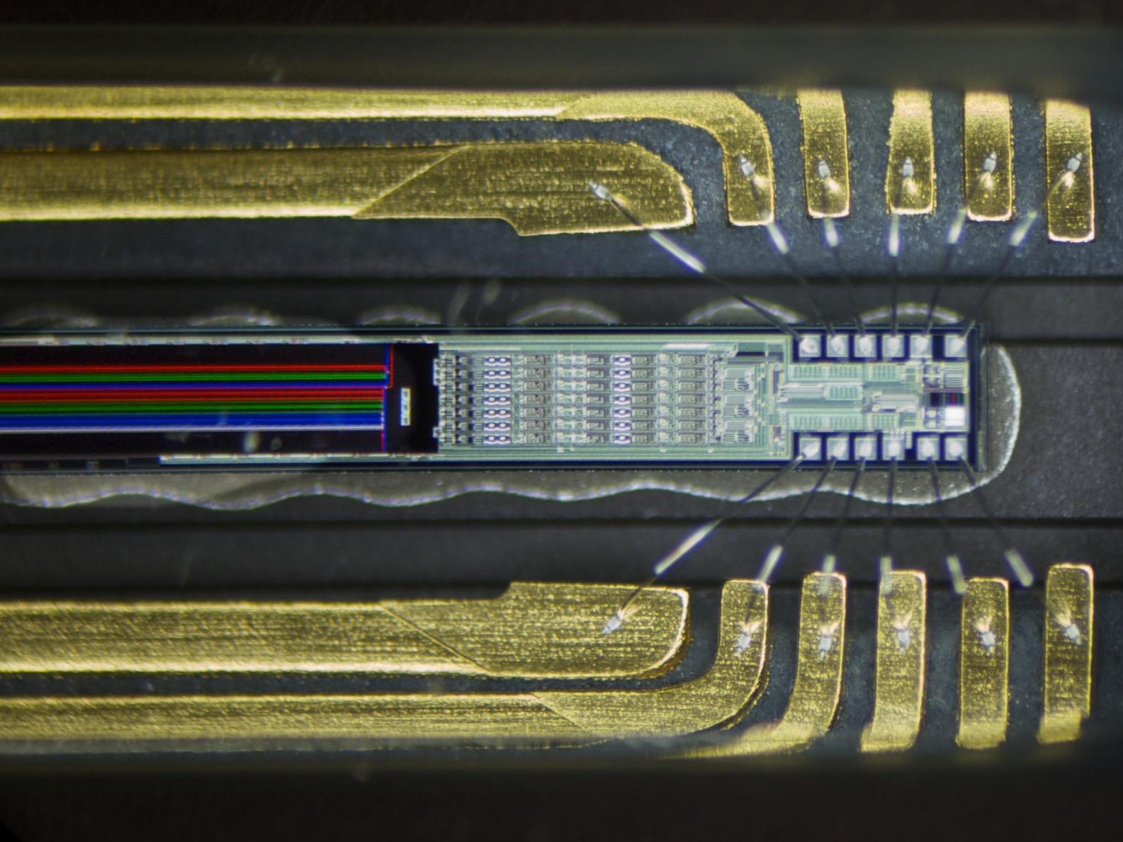 матрица для технопланктона купить в армавире